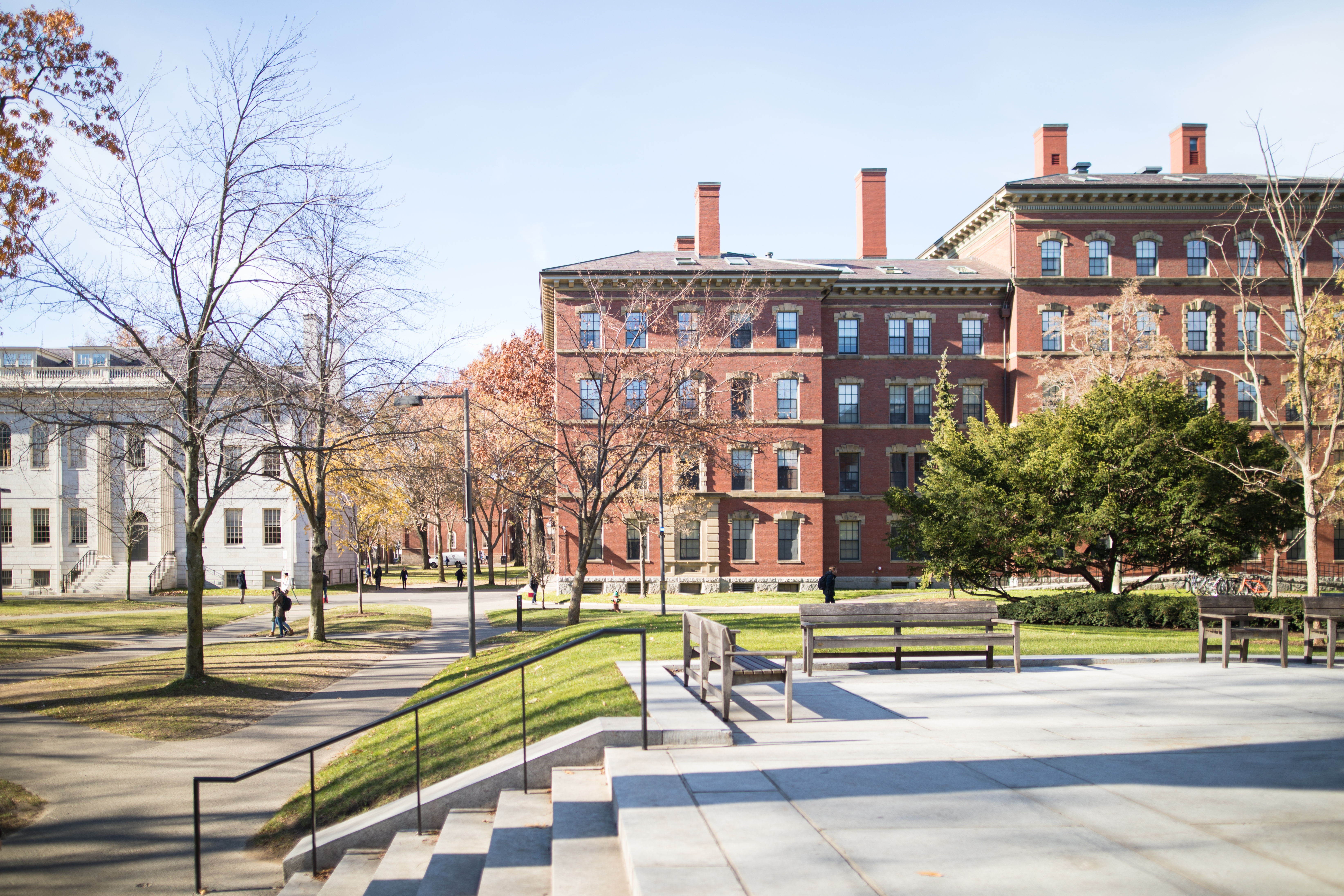 What is the IVY League and why are its member institutes so prestigious